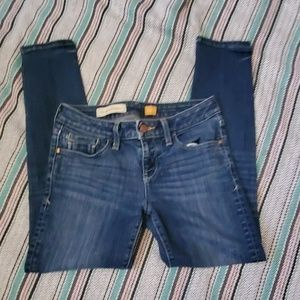 Anthropllgie Pilcro Fit Stet Ankle Jean Size 26p